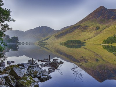 BUTTERMERE SENTINELS TREES